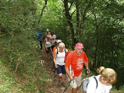 El sender ascendeix paral·lel al Torrent de Bussanya