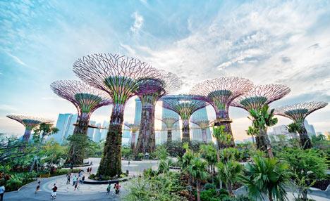 Teresa Arfiena Singapore Tourism