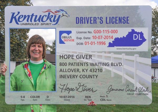 kentucky drivers license phone number