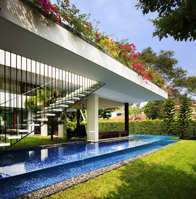 Contemporary Tropical Pool