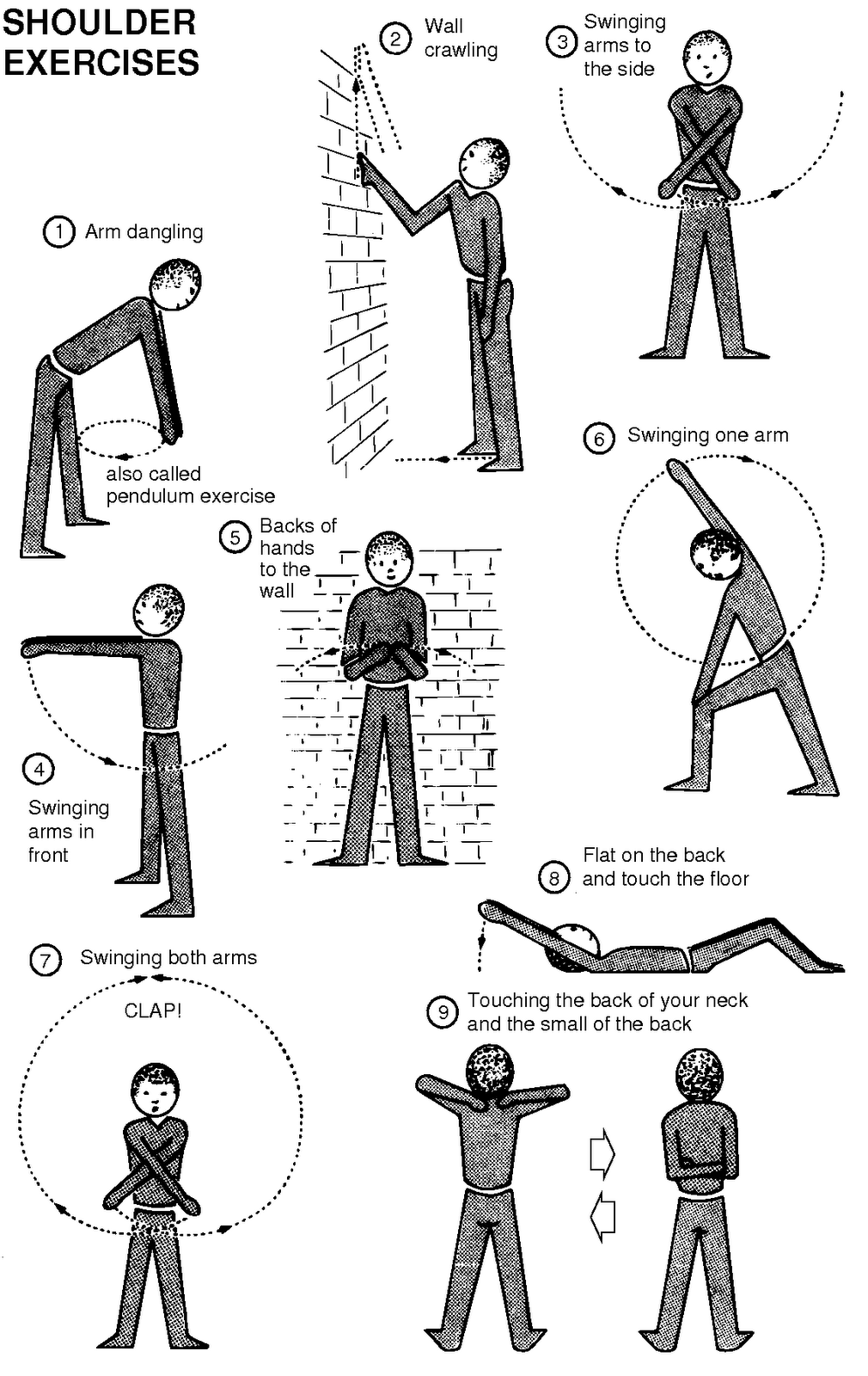 Physiotherapy guide for physiotherapists free exercise for shoulder