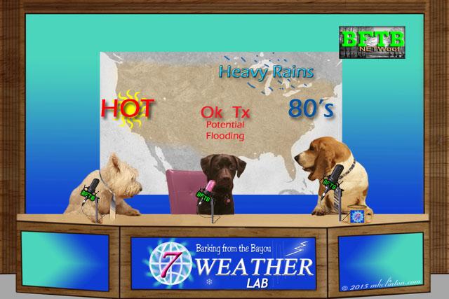 BFTB Weather report