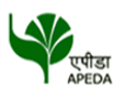 APEDA jobs in http://www.SarkariNaukriBlog.com