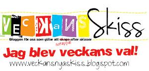 Veckans Val #17 2013