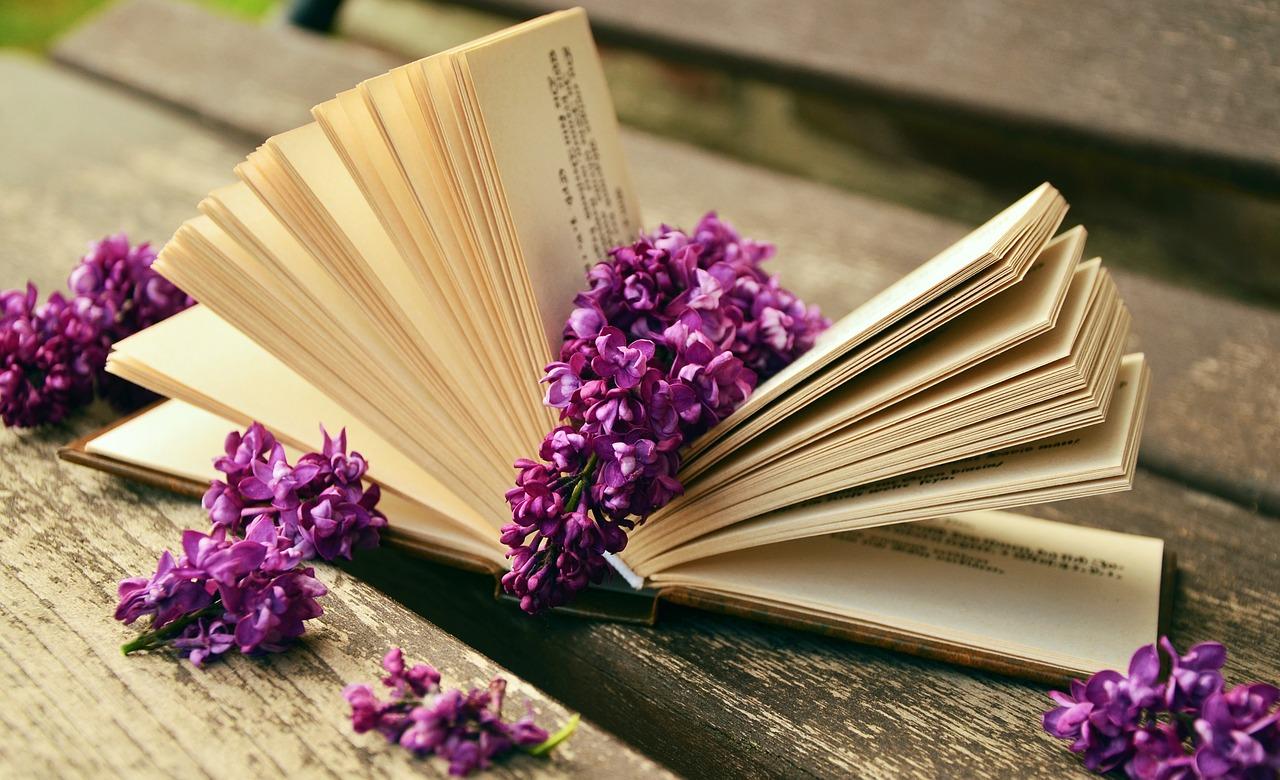 Booksareheroess