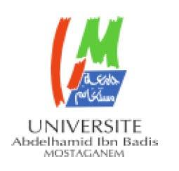 اعلان مسابقة ماجستير بجامعة عبد الحميد بن باديس مستغانم للسنة الجامعية 2013-2014