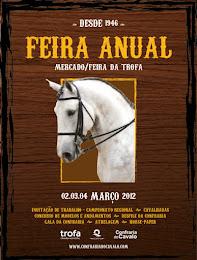 feira anual 2012