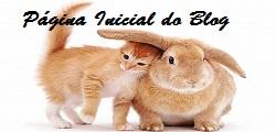 Bem vindo (a) / Welcome