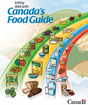 Canada Food Guide Chart 2012 http://www.factorfictionnutritionblog.com/2011/06/rainbows-and-pyramids-should-canada.html