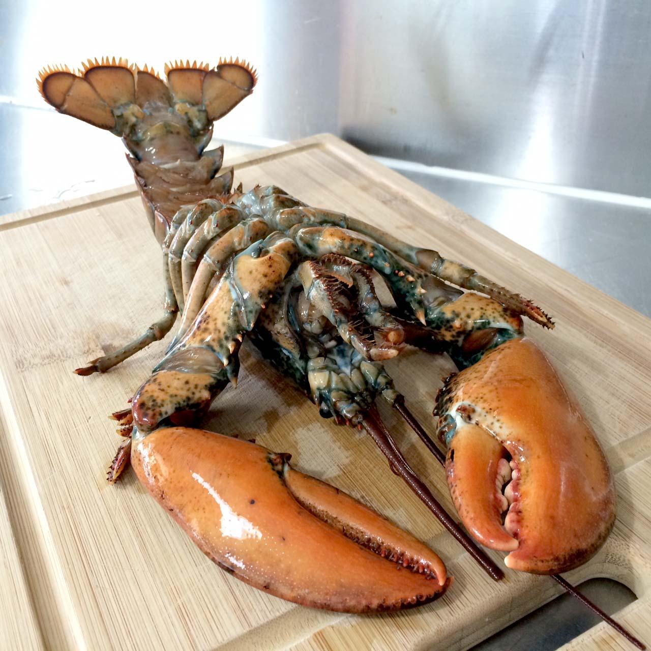 Loft48: Lobster Thermidor