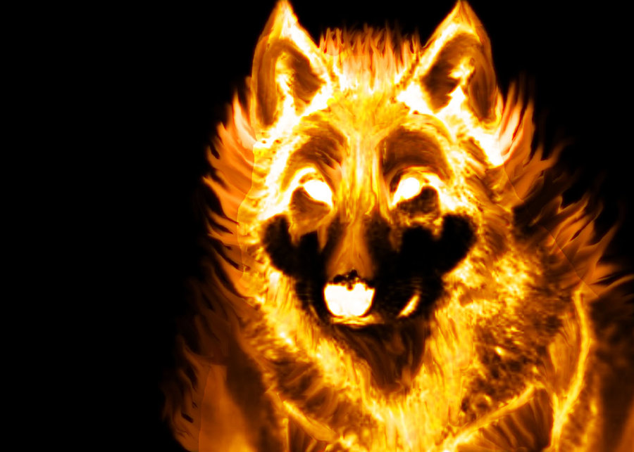 fire_wolf_by_lamar823-d318vx6.jpg