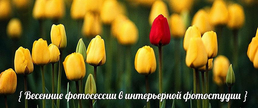 идеи для весенних фотосессий, весенние фотосессии в интерьерной студии, Пятигорск