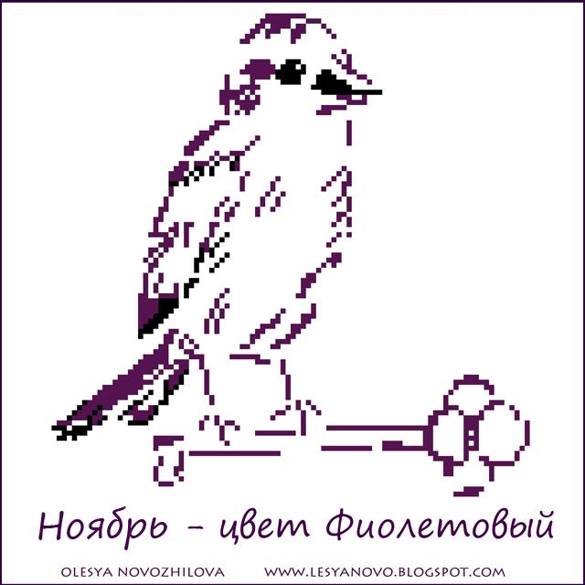 Пурпурная пичужка ноября)