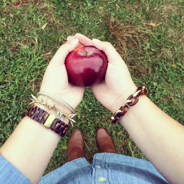 twilight saga apple cover