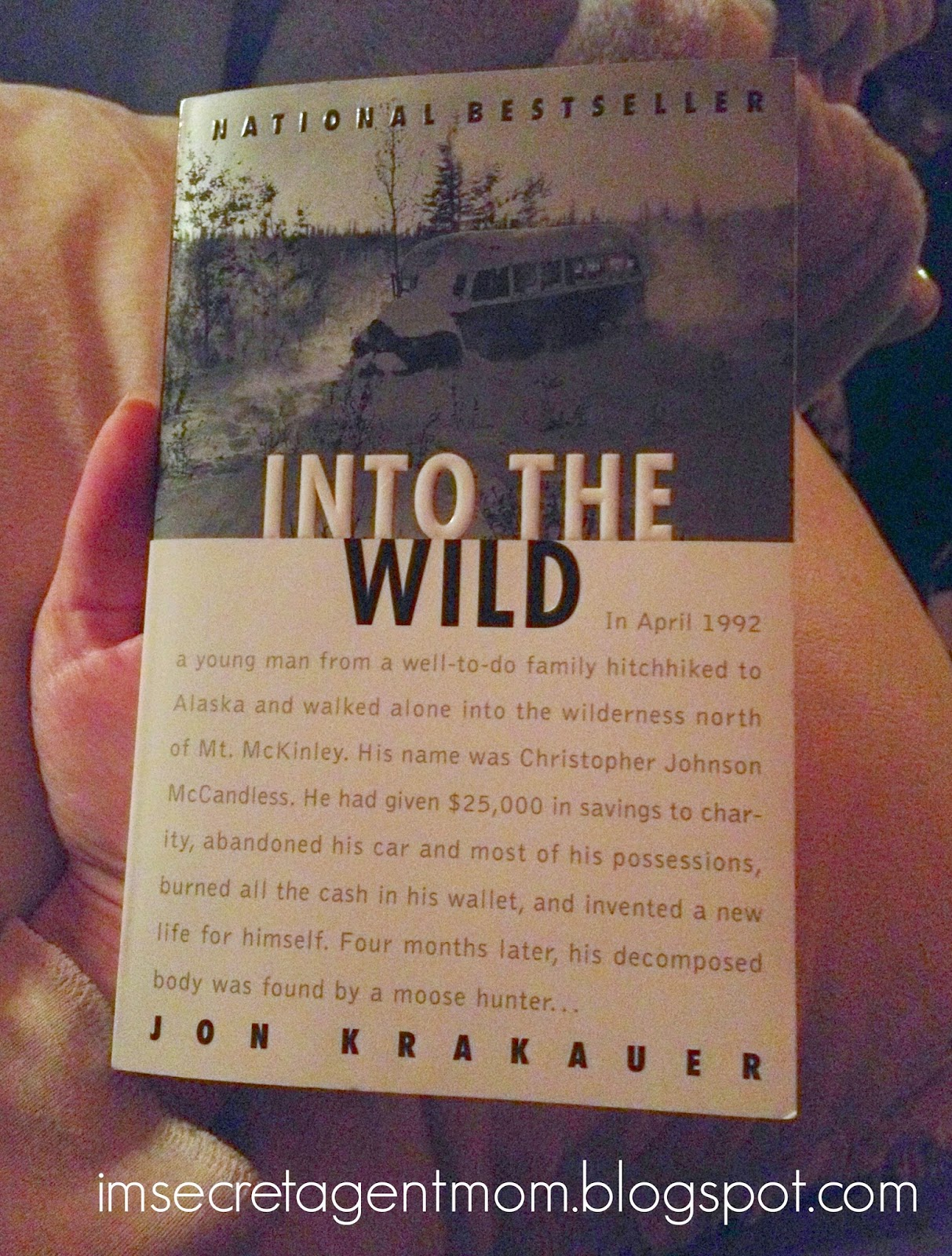 into the wild book review Read what all the top critics had to say about into the wild at  sensitive and  deeply affecting adaptation of jon krakauer's best-selling book.