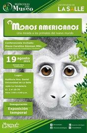 Monos americanos en el Museo de la Salle