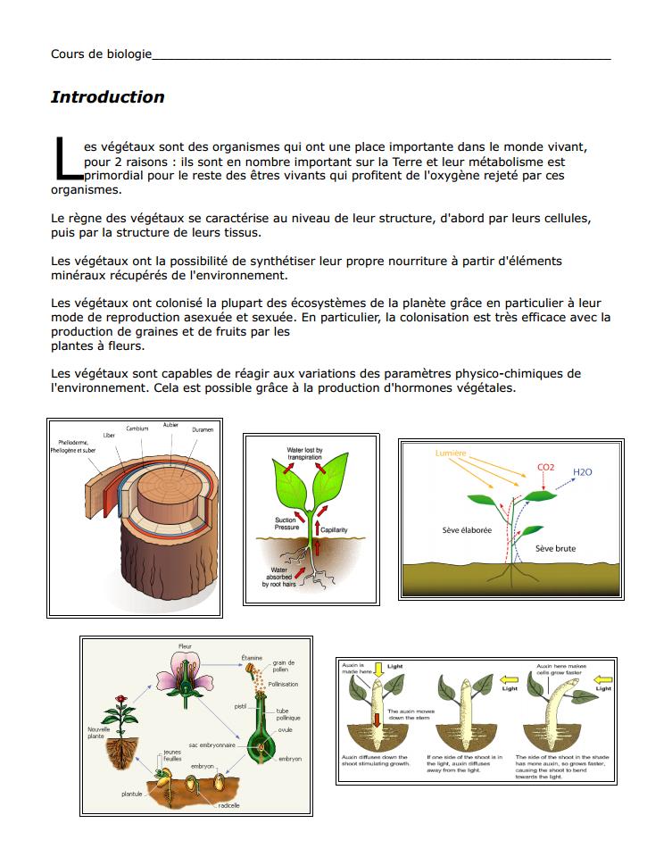 cours biologie végétale svt s2