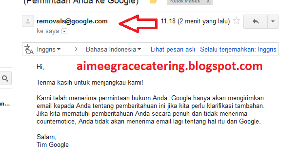 Blogger Google DMCA Takedown