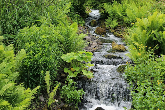 Edinburgh Botanic Gardens Hillside