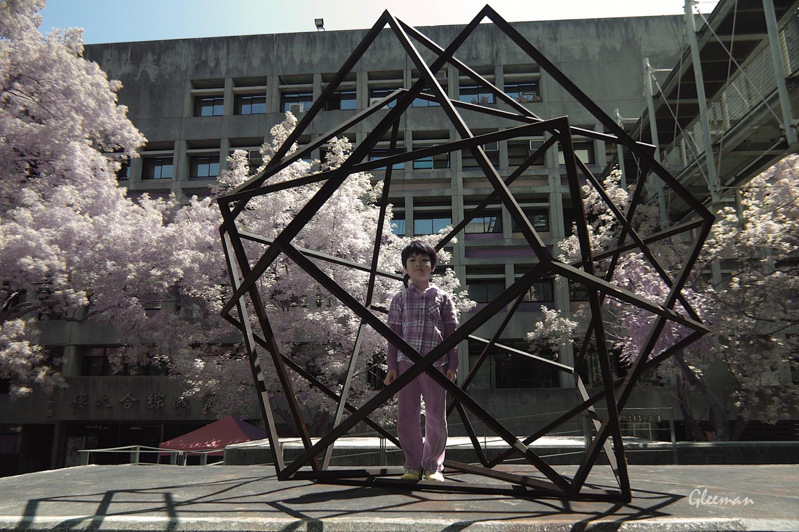 彩色紅外線攝影 (Pentax K5 Color IR),在實踐大學。
