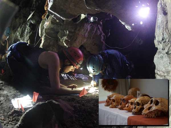 Primer-Humano-fósiles