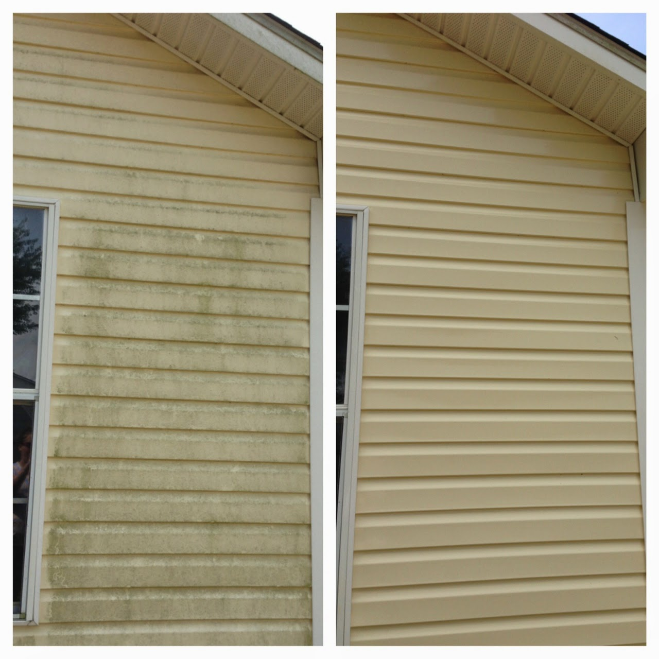 Before and After Pressure Washing fun!