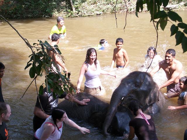 Santuario elefantes Malasia Kuala Lumpur Malaysia