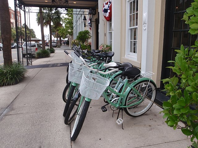 Alligator Bikes Kiawah Island for Ali the alligator