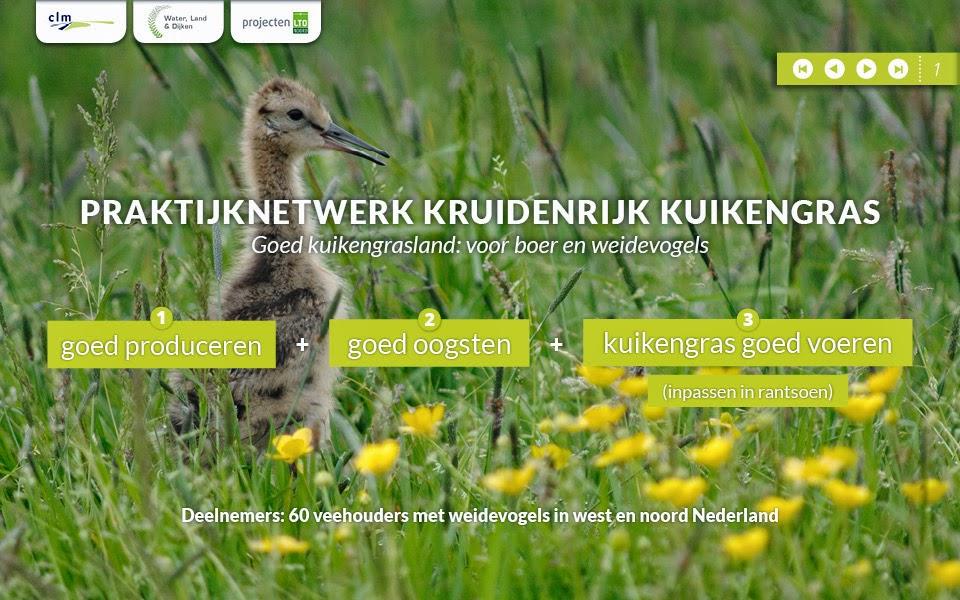 Interactieve PDF Kruidenrijk Kuikengras voor CLM en LTO Noord