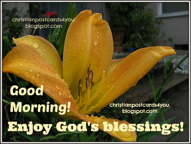 Good Morning. Enjoy God's blessings. Christian postcards, free cards for friends to share by facebook, twitter. happy day.