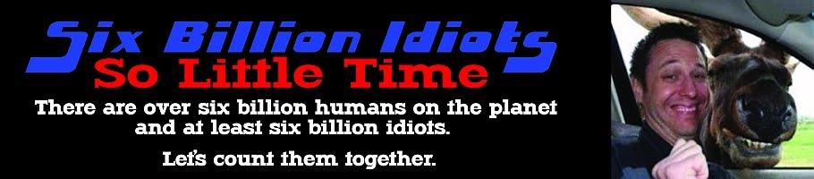 Six Billion Idiots, So Little Time