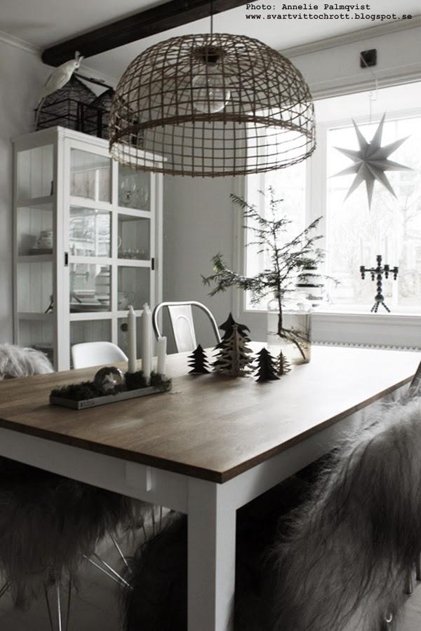 juldekoration, juldekorationer, julen 2014, jul, julens, diy, pyssel, granar, gran med synliga rötter i glasvas, advent, matsal, svart och vitt, svartvita, vitt vitrinskåp,