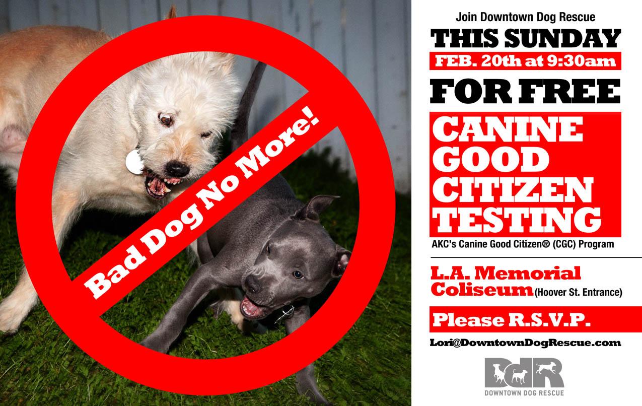 LA Coliseum – Downtown Dog Rescue