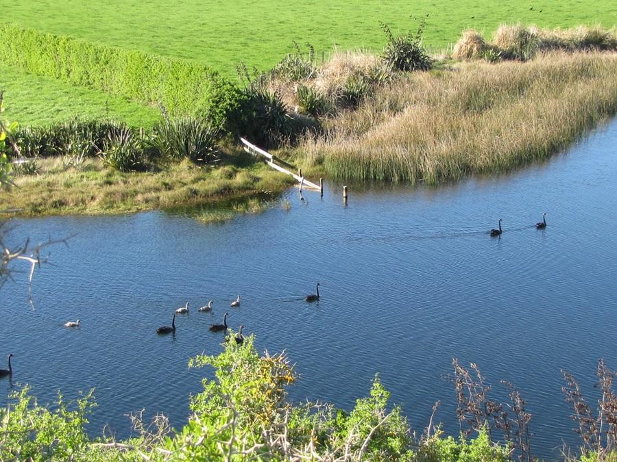 hawera-nowells-lakes