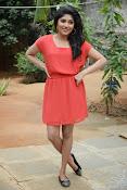 Samyuktha Hornad Glam pics-thumbnail-16