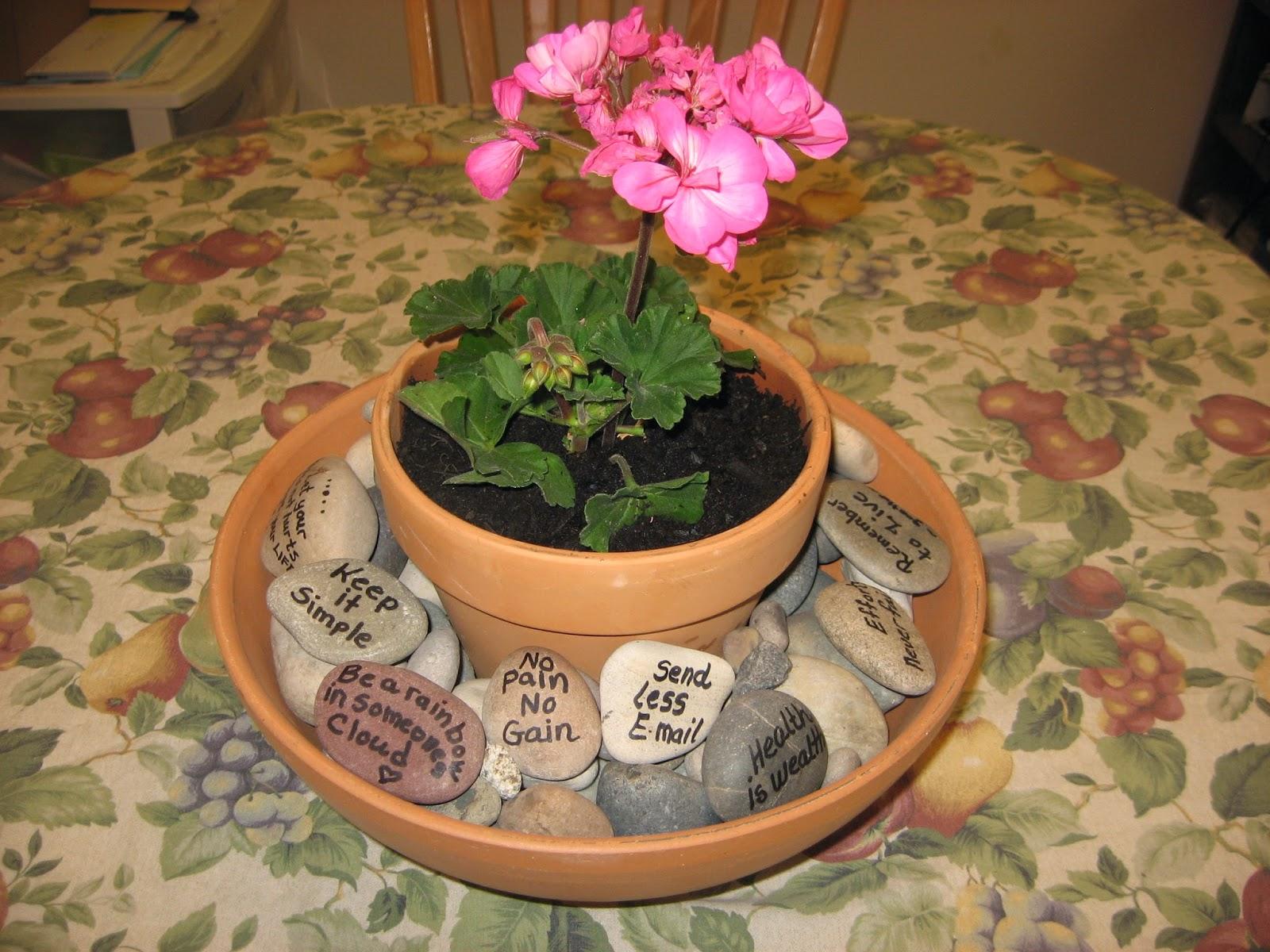 gardening - joy for the soul