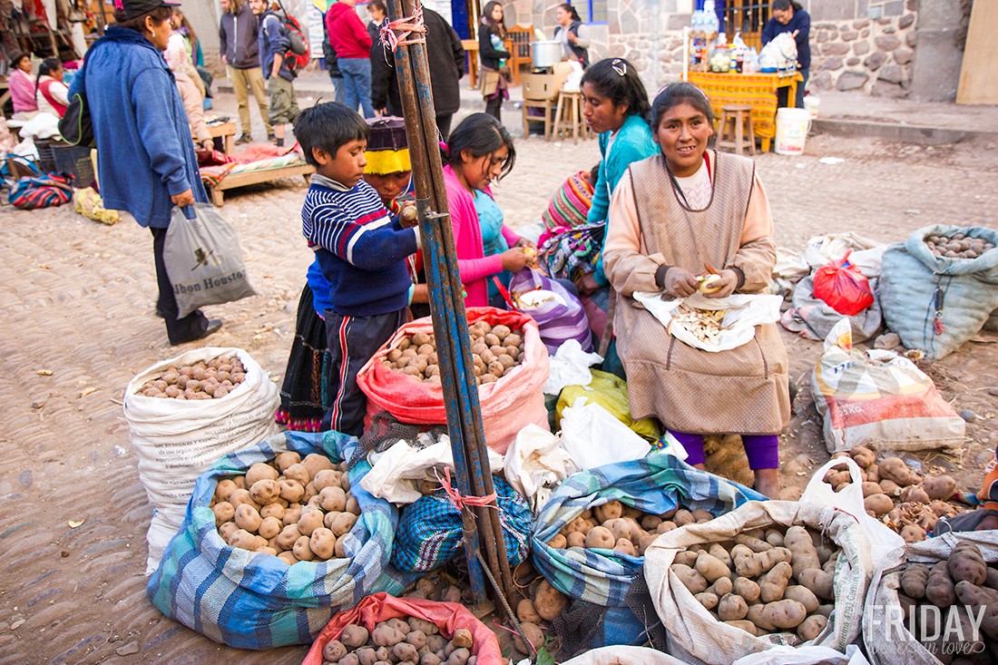 Potato Farmers Peru
