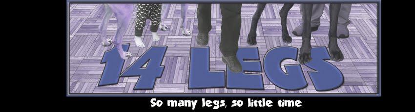 14 Legs