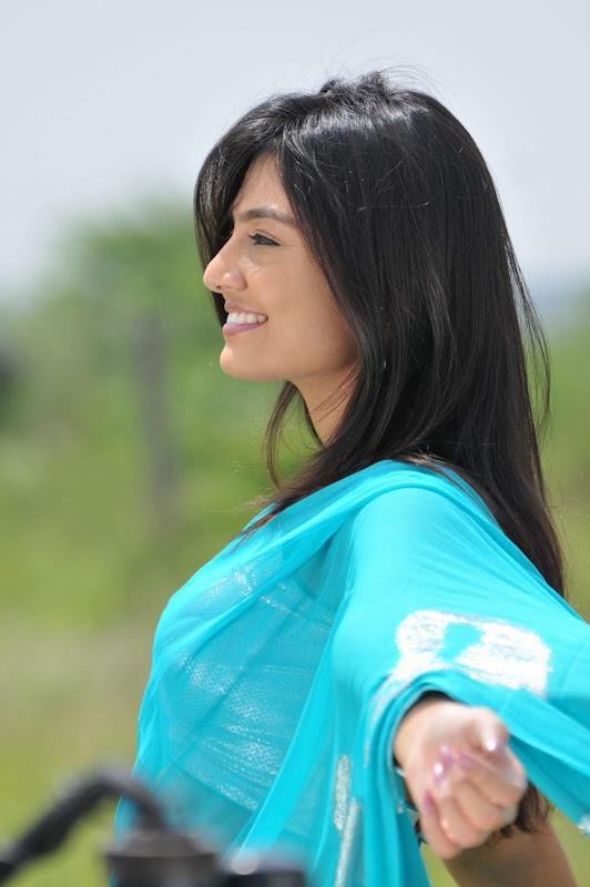Nikitha Narayan Cool Saree Stills Nikitha Narayan Hot Saree Photos hot images
