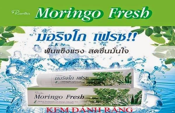 cách sữ dụng Kem đánh răng Moringo Fresh