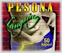 PESONA LANGSING