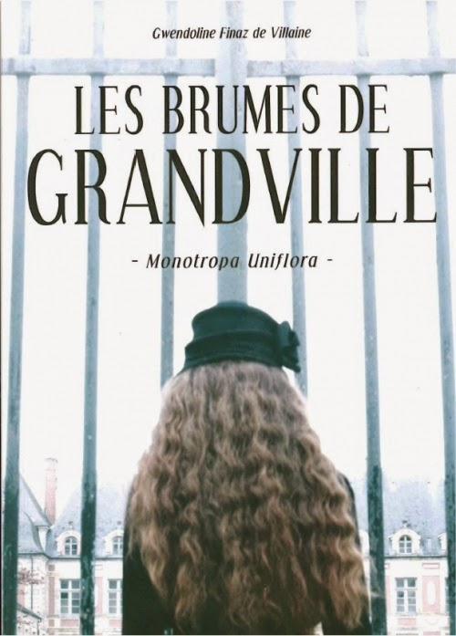 http://www.leslecturesdemylene.com/2014/10/les-brumes-de-grandville-tome-1.html