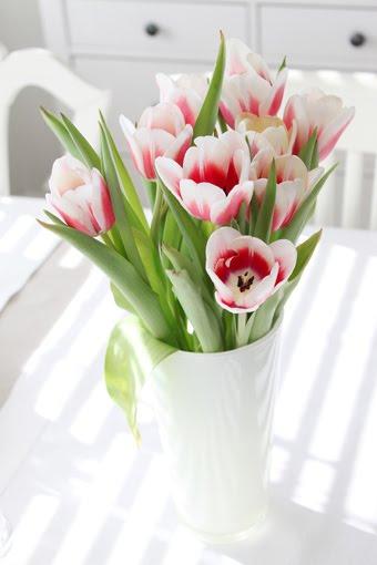 älskar tulpaner!