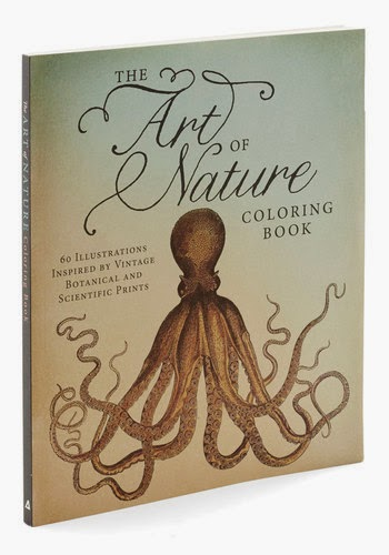 coloring book for adults the art of nature