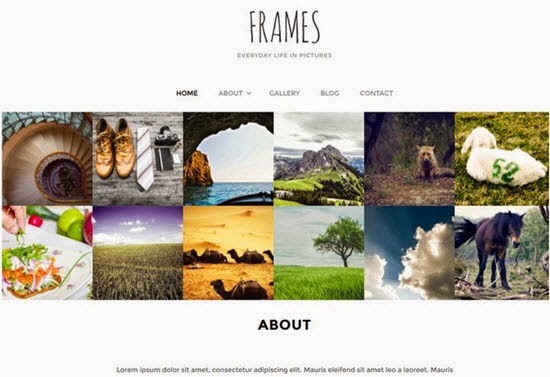 Frames WordPress Theme