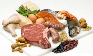 makanan tinggi protein terbaik