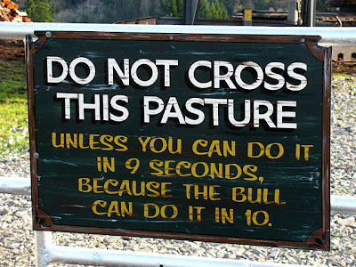 Do not Cross this Pasture