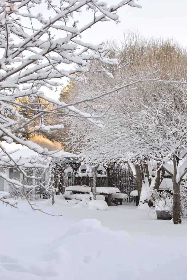 hannashantverk.blogspot.se vinter i trädgården winter garden snow