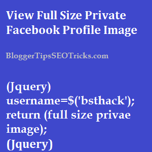 Private Facebook Profile Picture Viewer