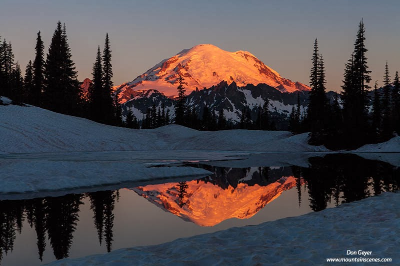 Mount Rainier reflected in the thawing waters of Upper Tipsoo Lake, Mount Rainier National Park, Washington.